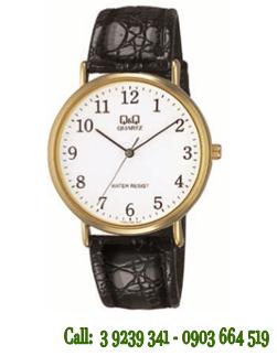 Đồng hồ đeo tay Nam Q&Q V720J104Y chính hãng Q&Q Citizen